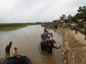 baie cu elefantii