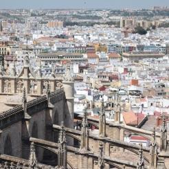 vedere din Catedrală